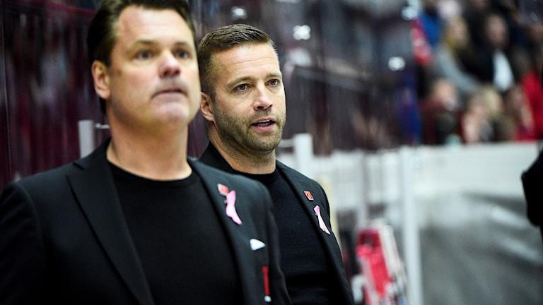 Örebros tränare Lars Ivarsson och Johan Tornberg.
