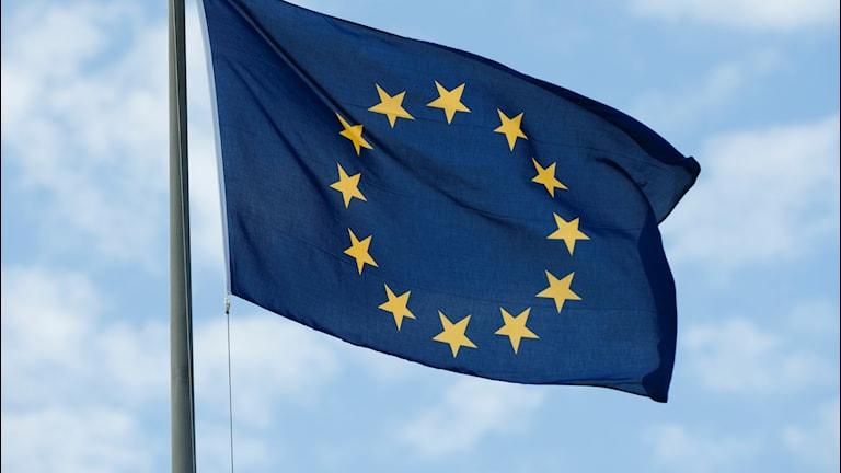Arkivbild EU-flagga.