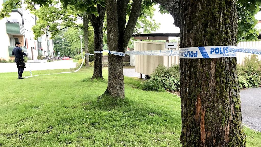 Avspärrningarna vid platsen där den misstänkta skottlossningen inträffade.