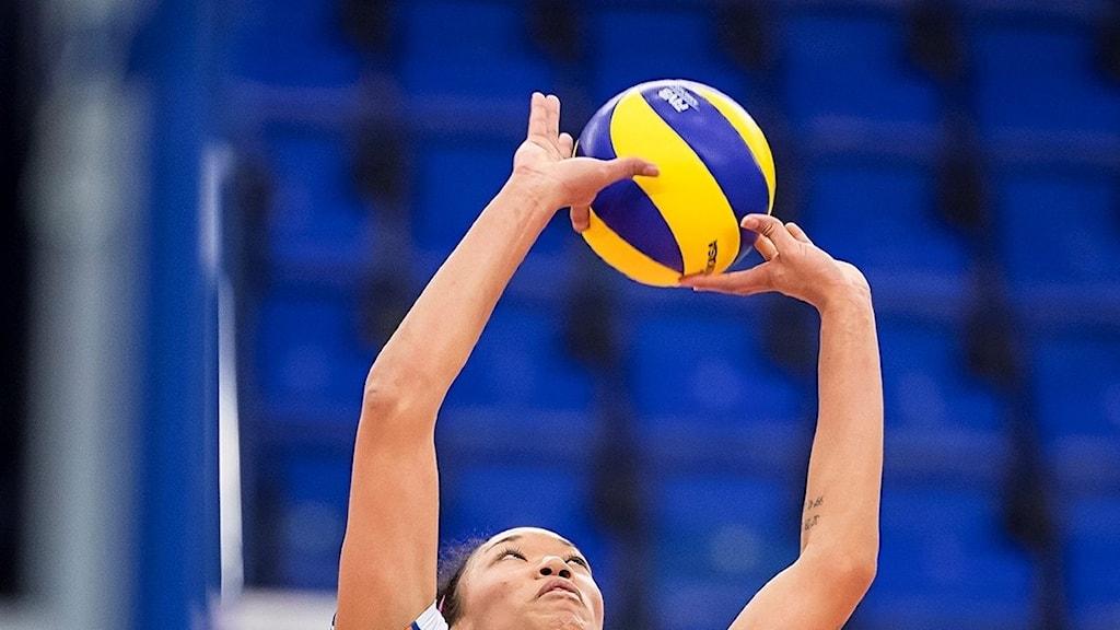 volleyboll, Linde