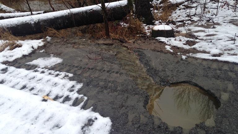 Under en vecka har det runnit avloppsvatten ur marken vid Carls hus
