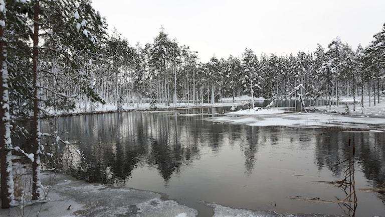 Mycket vatten nedströrms Högfors efter att dammen gått sönder.