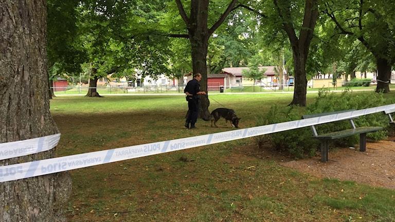 Misstänkt våldsbrott vid Oskarstorget i Örebro.