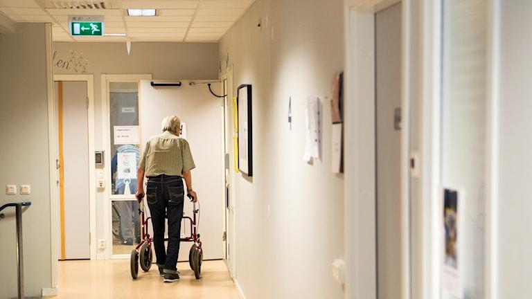 Man med rullator sedd bakifrån går genom korridor på äldreboende