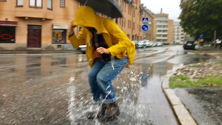 Regn, regnigt, översvämning, väder, dåligt väder, vatten