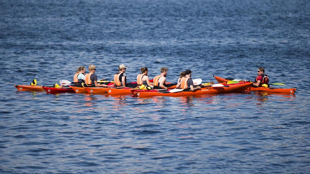 6 kajakpaddlare i röda kajaker på vattnet som får instruktioner av kajakinstruktör.