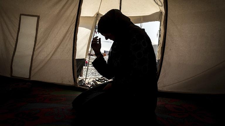Iraq Amnesty