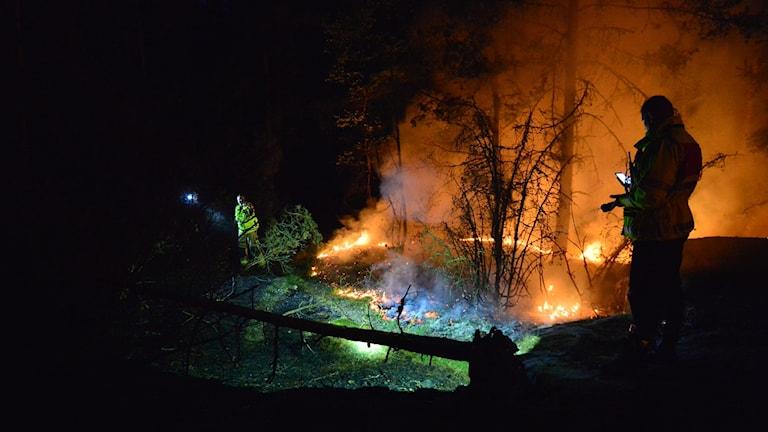 Skogsbrand i Vrinneviskogen