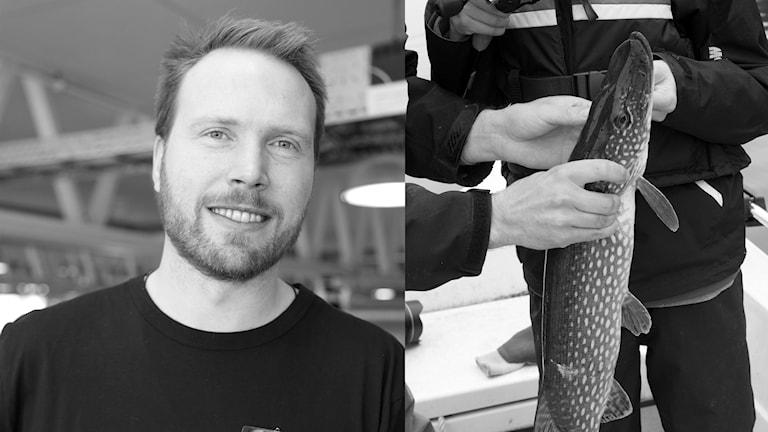 projektledare för rovfisk hos sportfiskarna i Kalmar