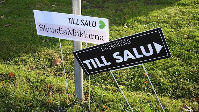Mäklarskyltar. Foto: Raina Medelius/Sveriges Radio