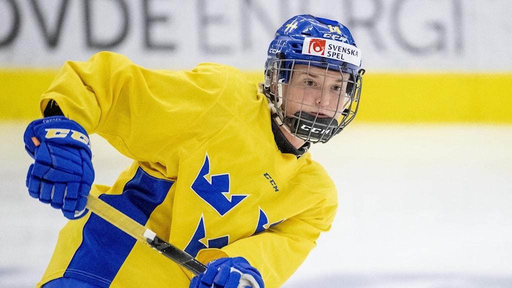 En damhockeyspelare i Tre Kronors matchdräkt.