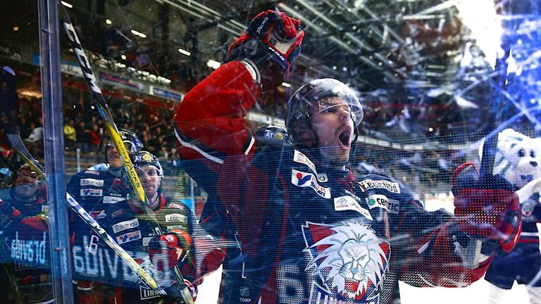 Linköpings Andrew Gordon jublar vid slutsignalen i torsdagens ishockeymatch i SHL mellan Linköping HC och Brynäs IF.