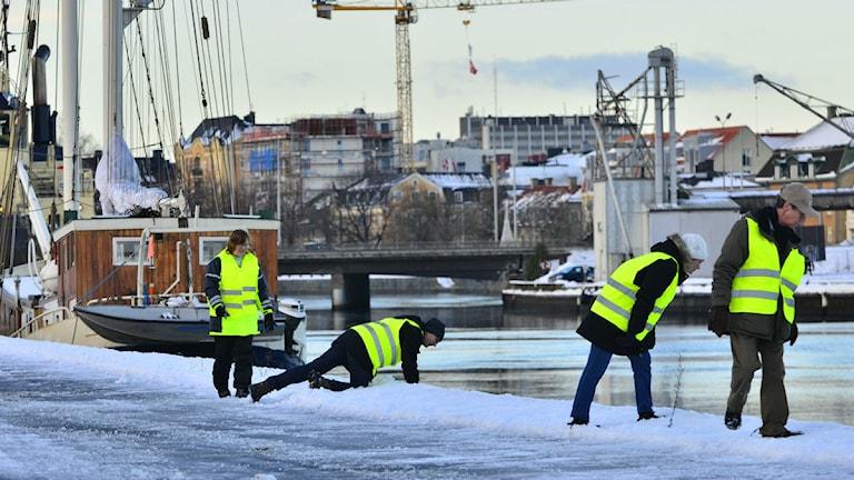 Missing people genomför skallgång den 27 december foto:Niklas Luks