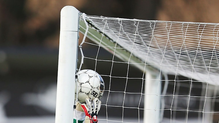Fotbollsmål. Foto: Andreas Hillergren/Scanpix