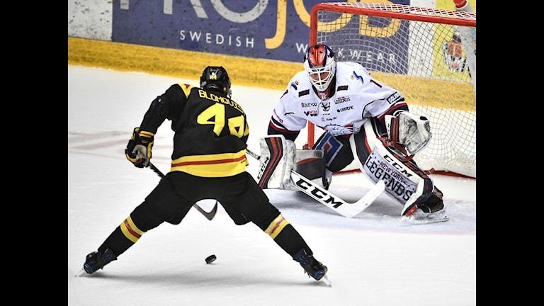 Linköpings målvakt Marcus Högberg.