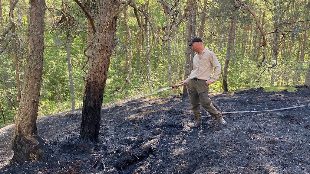 En skogsbrand bröt ut i Vrinneviskogen i Norrköping. Två hektar förstördes.