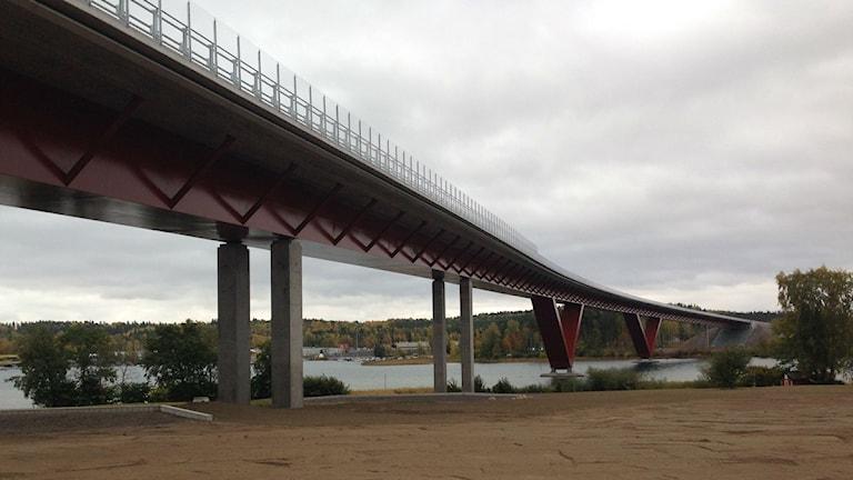 Motalabron underifrån. Foto: Jimmy Calmerberg/Sveriges Radio