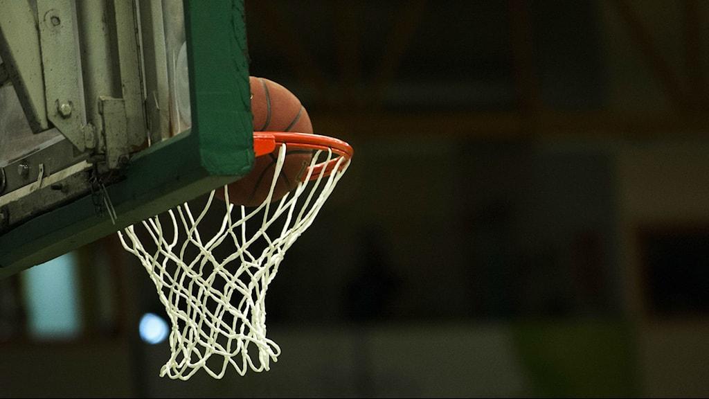 Basketkorg. Foto: Fredrik Sandberg/TT.