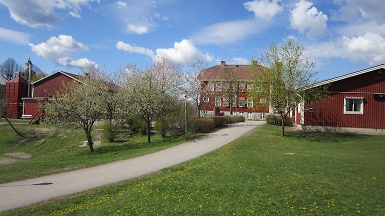 Ringarums skola är en av skolorna i Valdemarsvik. Arkivfoto: Raina Medelius/Sveriges Radio