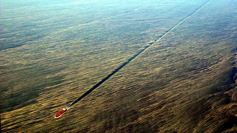 Algblomning i Östersjön 2005. Foto: Kustbevakningen