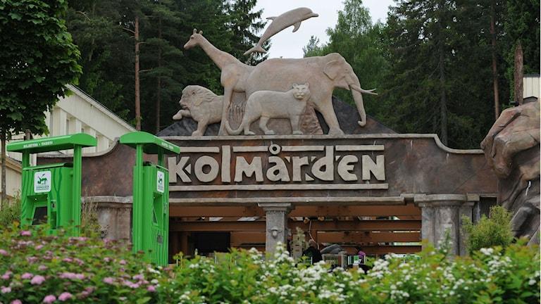 Entrén till Kolmårdens djurpark. Foto: Pontus Stenberg/TT.