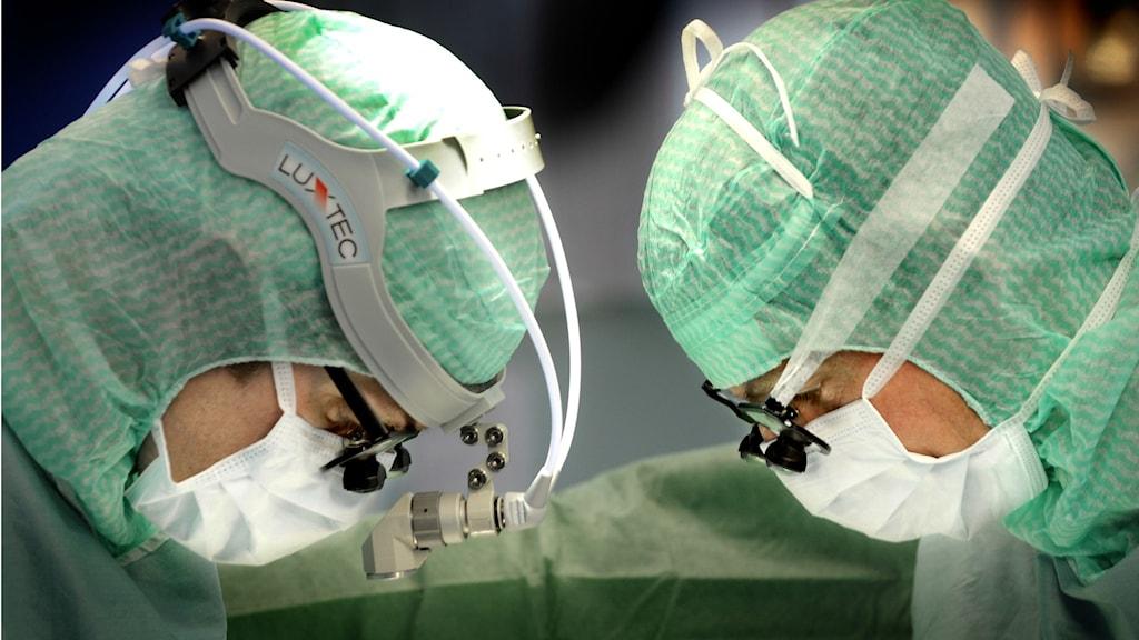 Två operationsklädda kirurger. Foto: Tomas Oneborg/Svd/TT.