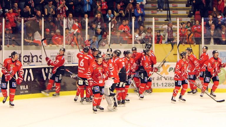 Vita Hästen jublar framför fansen. Foto: Christina Turesson/Sveriges Radio