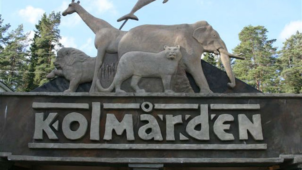 Entréskylt Kolmårdens djurpark. Foto: Christina Turesson/Sveriges Radio.