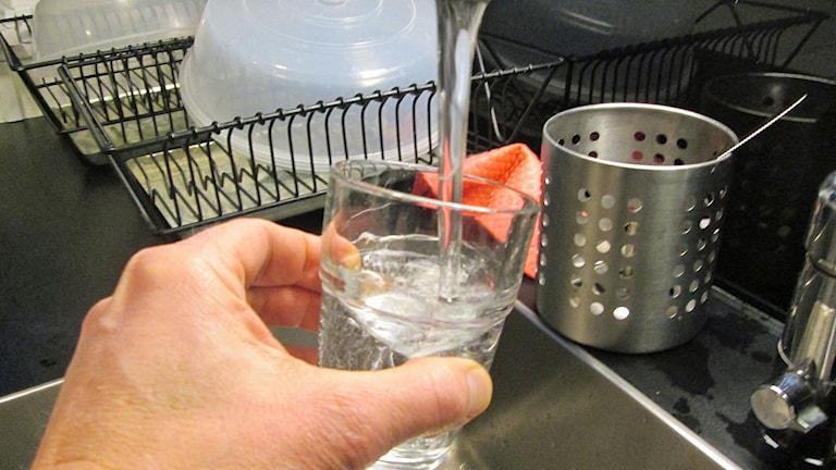 Dricksvatten från kran. Foto: Christian Ströberg/Sveriges Radio