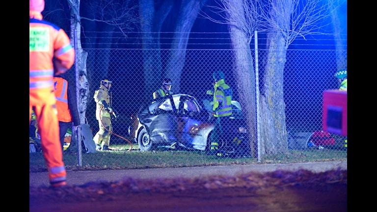 En bil har kört in i ett träd.