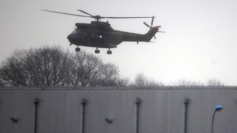 Militärhelikopter i luften. Foto: Peter Dejong/TT