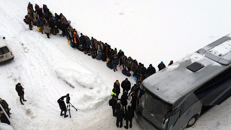 buss migranter