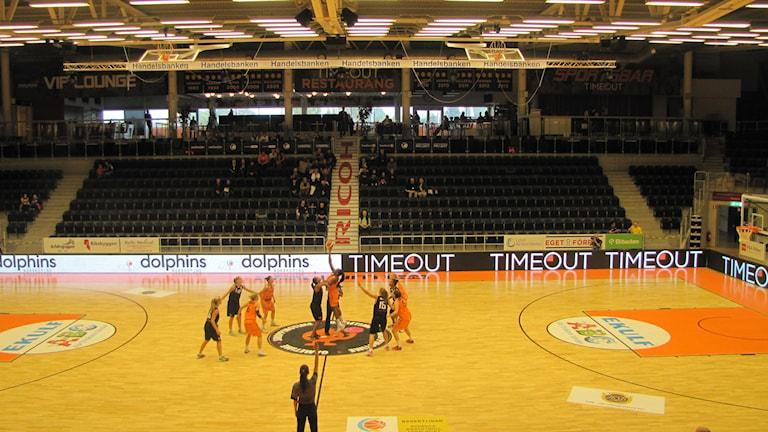 Norrköping Dolphins damlag är redo att ta sig an SM-slutspelet i basket.