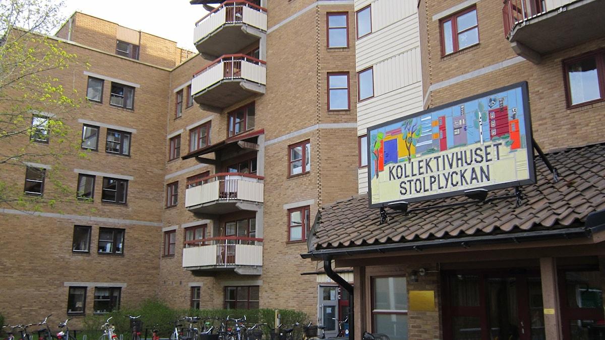 Stolplyckans kollektivhus har funnits i över 30 år. Foto: Molly Berggren/Sveriges Radio