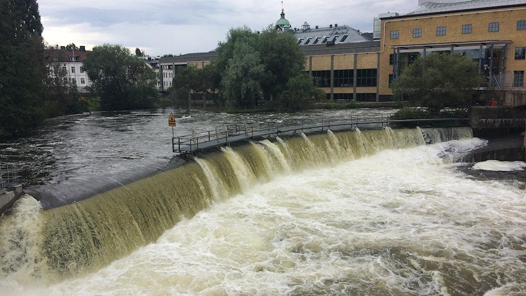 Motala ström vid Louis De Geer i Norrköping. Foto: Axel Swartling/Sveriges Radio