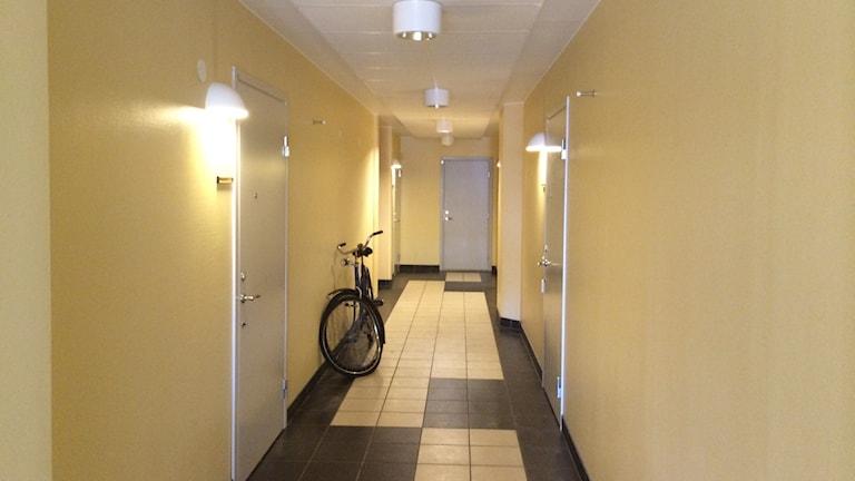 Studentkorridor. Foto: Axel Swartling/Sveriges Radio.