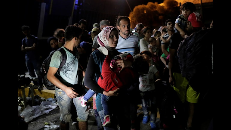 Båtflyktingar anländer till Grekland. Foto Petros Giannakouris/TT