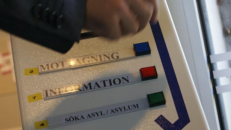 Asylsökande till Migrationsverket Foto: Tahir Yousef P4 Östergötland Sveriges Radio
