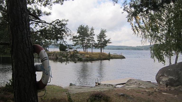 Badbryggan vid det markförorenade området på Torpön. Foto: Raina Medelius/Sveriges Radio