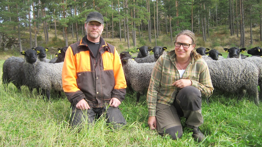 Anders och Ulrika Isaksson. Foto: Raina Medelius/Sveriges Radio