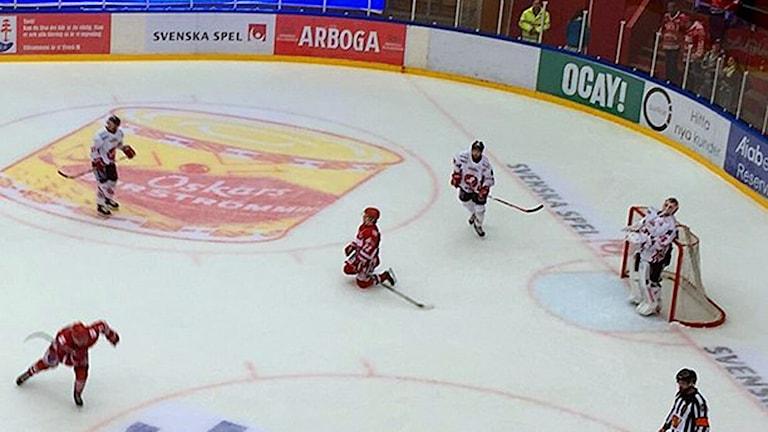 Ishockeymatch mellan Vita Hästen och Timrå. Foto: Fredrik Thimeradh/Sveriges Radio