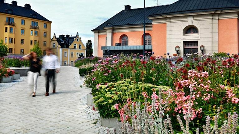 Förra året var Strömparken en av de nominerade kandidaterna, och i år gick Hörsalsparken hela vägen och valdes ut som prismottagare av juryn. Foro: Norrköpings kommun