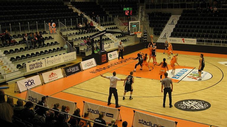 Coach Jesper Sundberg eldar igång sitt lag. Foto: Albin Falk Hansson/Sveriges Radio