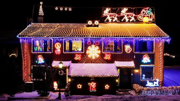Hus med väldigt mycket julbelysning Foto: Cornelius Poppe/TT