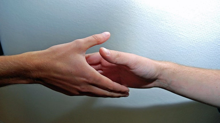 Handslag. Foto: Tobias Wallin/Sveriges Radio