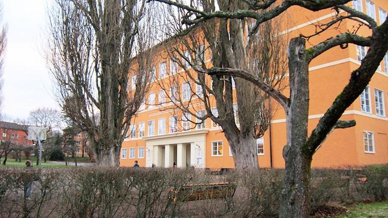 Internationella engelska skolan i Linköping Foto: Raina Medelius/Sveriges Radio