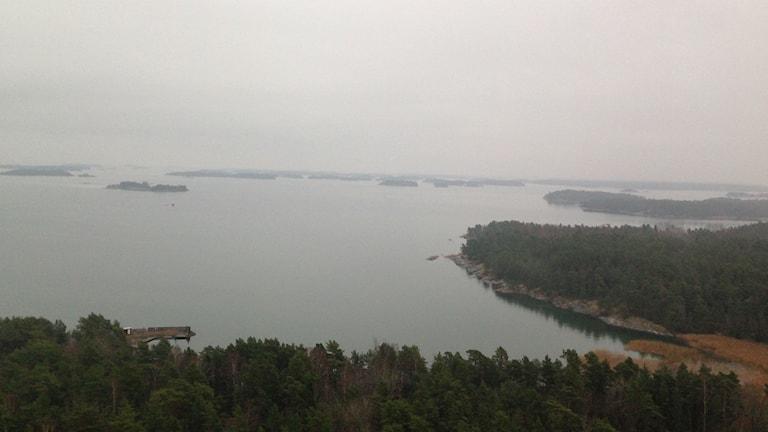 På öarna och kobbarna kan vindkraftverken komma att byggas. Foto: Sofia Strindvall/Sveriges Radio