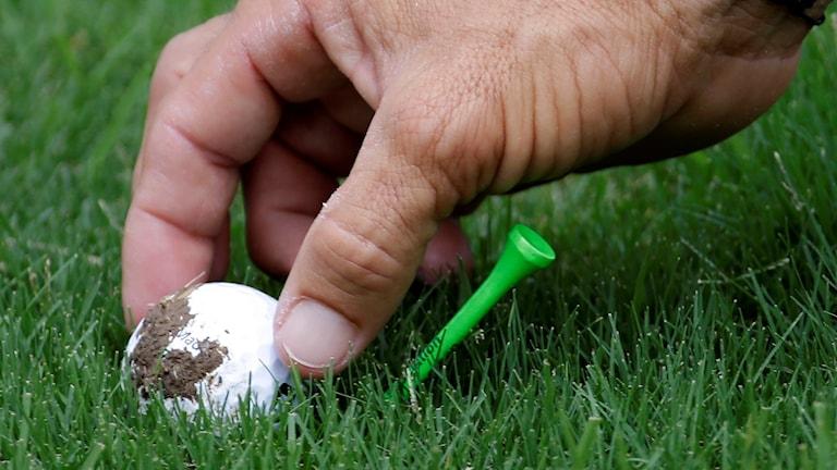 Golfboll. Foto: Mark Humphrey/TT