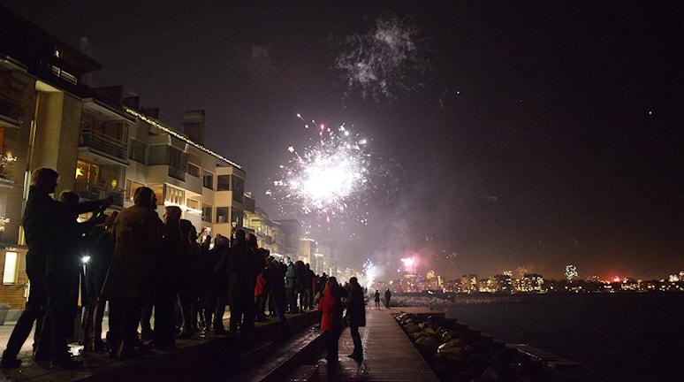 Nyårsfirande. Foto: Johan Nilsson/TT