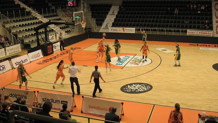 Basket. Foto: Albin Falk Hansson/Sveriges Radio
